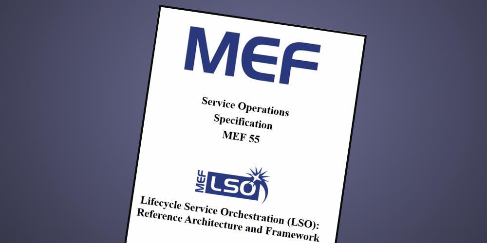 MEF-LSO-55