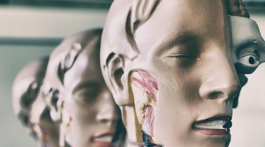 Utilizarán células madre del cerebro humano para alimentar sistema de IA