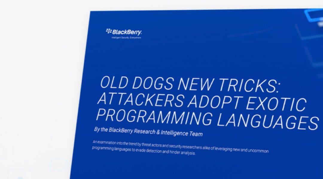"""Los ciberdelincuentes están recurriendo a lenguajes de programación """"exóticos"""""""