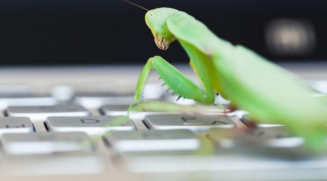 """Google revela un """"nuevo capítulo"""" del programa Bug Bounty"""